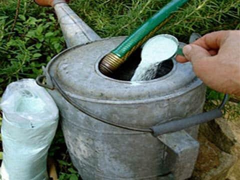 Приготовления раствора для подпитки овоща