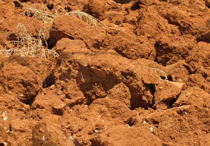 Поверхностный слой земли, содержащий песок и глину