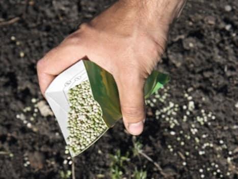 Внесение полезных веществ в грунт