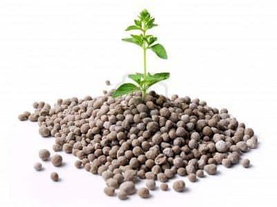 Неорганические и органические вещества для повышения урожайности почвы