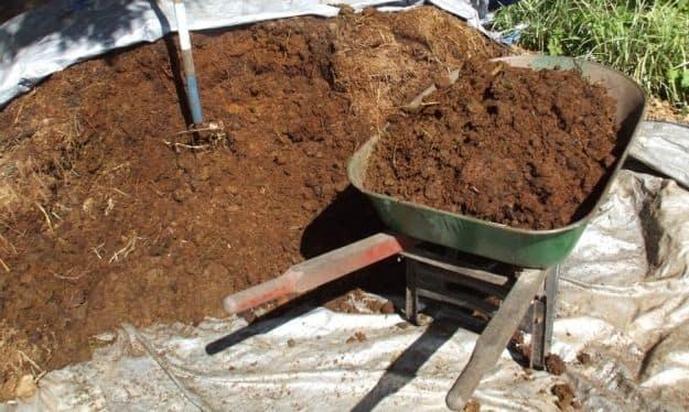 Органическая подкормка для почвы