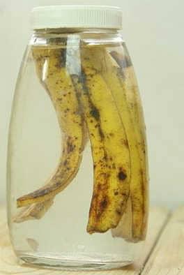 Настой из банановой кожуры