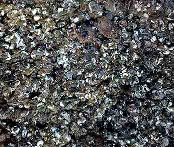 Органическая подпитка для почвы