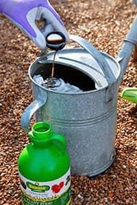 Приготовление раствора для подкормки растений