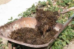 Универсальная подкормка для почвы