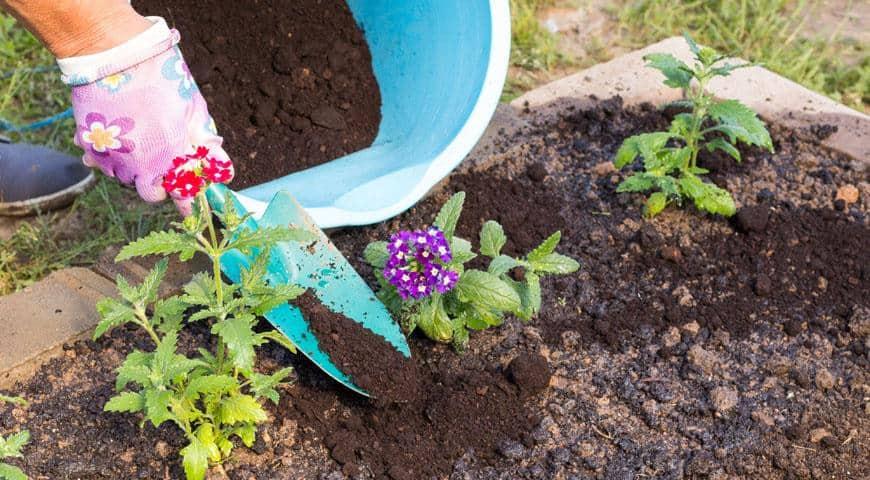Подпитка почвы