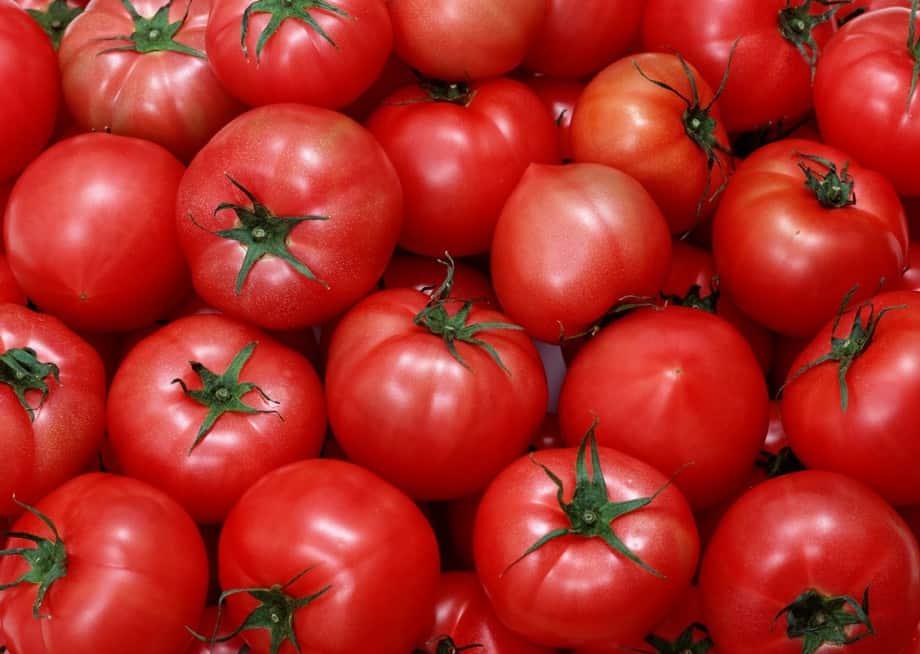 Проведение подкормок – залог хорошего урожая