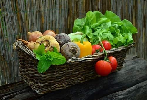 Хороший урожай после удобрений