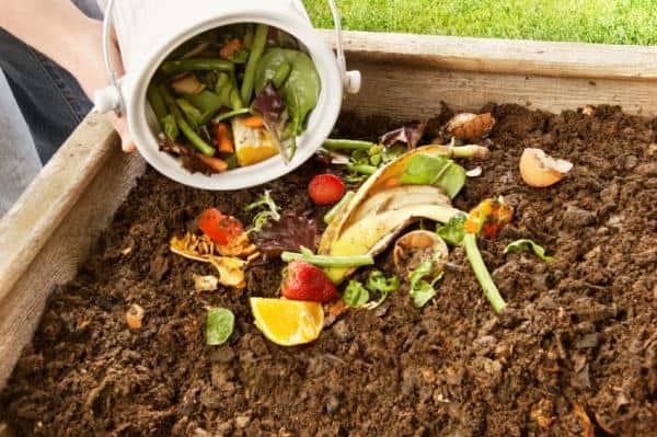 Можно ли сажать в компост 1
