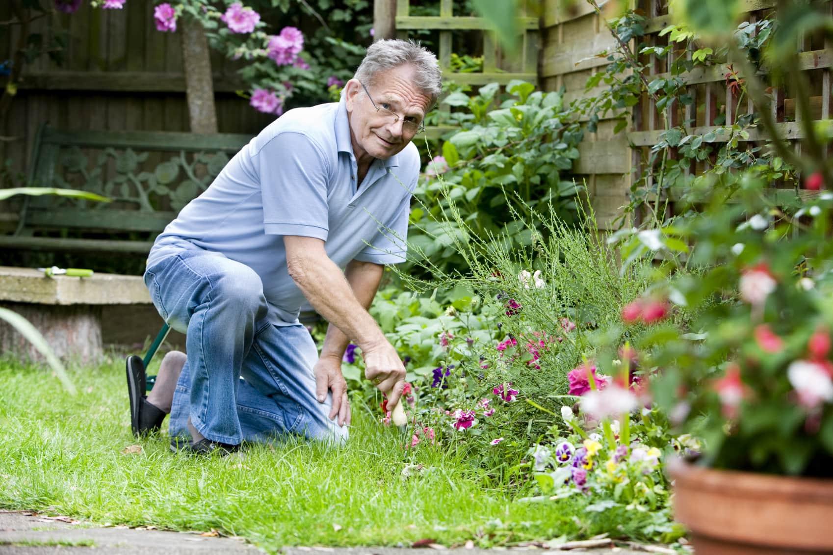 Фото садовник и цветок