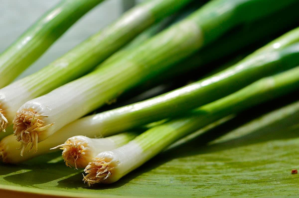 Чем полезен зеленый лук Полезные свойства зеленого лука