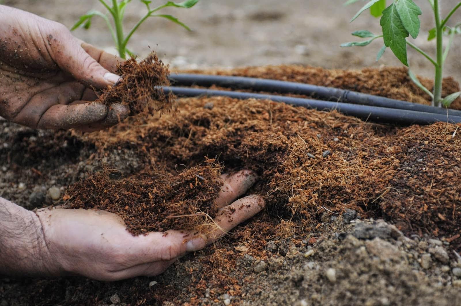 Подготовка почвы к посадке: виды и особенности Cельхозпортал