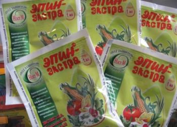 Эффективные подкормки для перцев и томатов