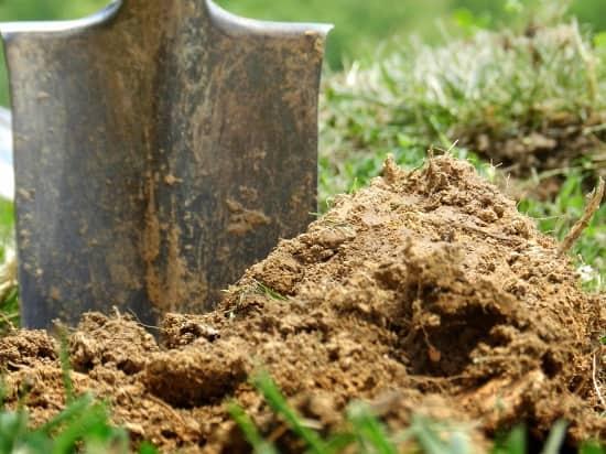 Осенняя подпитка грунта: внесение органической подкормки